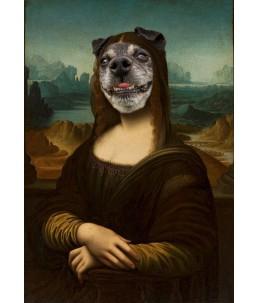 Karolek (Leonardo da Vinci...